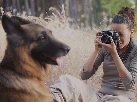 Photographie de Nature & Animalière - <p>Macrophotographie, Safari Photo ... Plus de 6h de cours vidéo</p> |