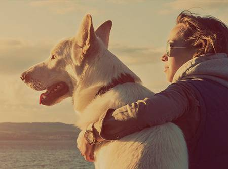 Éducation canine - Méthode 100% positive et amicale |