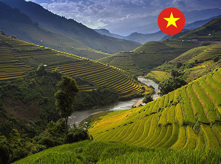 Vietnamien - Express