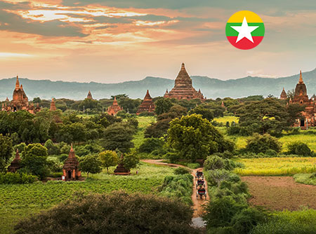 Birman - Express - <p>Apprendre le Birman en ligne pour débutant</p> |