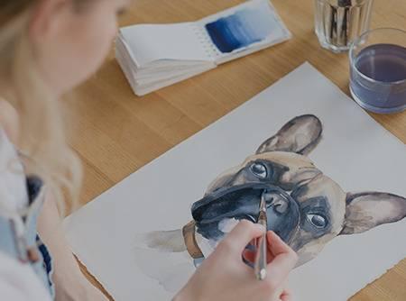 Dessin d'animaux - Apprendre les bases pour dessiner des animaux |
