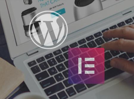 WordPress : Créer son site avec Elementor - <p>Construire des thèmes WordPress sans coder avec Elementor</p> |