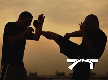 Krav Maga : les Fondamentaux (ceinture blanche) - Apprendre à se défendre grâce au Krav Maga |