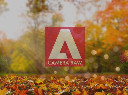 Camera Raw : les Fondamentaux