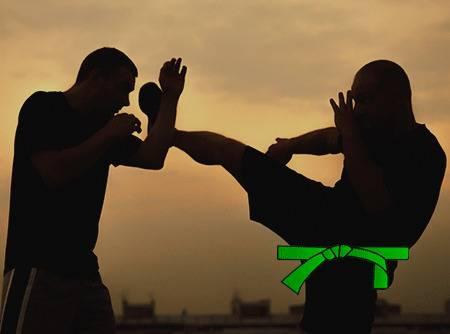 Krav Maga : Ceinture verte - Apprendre à se battre pour passer ceinture verte |