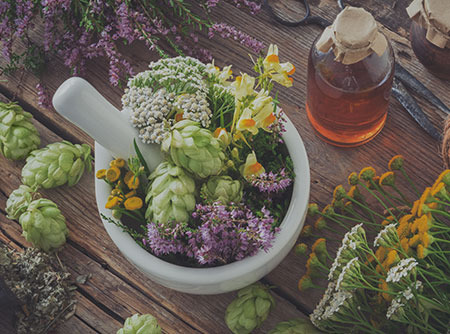 Plantes sauvages comestibles et médicinales