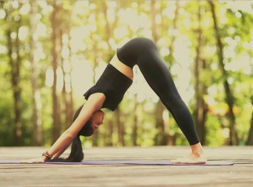 Yoga : Techniques avancées - Pratiquer le yoga à un niveau avancé |